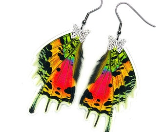 Real Butterfly Wing Earrings (Urania Ripheus HW - E053)
