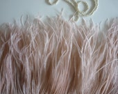 VOGUE OSTRICH Feather Fringe / Nude, Blush  /  381 - 6