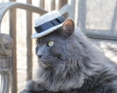 Fedora Cat Hat - Cat Hipster Hat - Cat Clothes - Hand Felted Gray Fedora