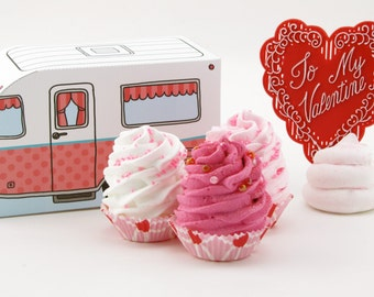 "Fake Cupcake & Retro Inspired Camper Gift Box Set ""Glamping Cupcake Sweetheart Collection"" Swell Valentine Gift Turquoise/Pink Box"