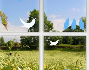 Blackbird Window Stickers, Bird Window Protectors