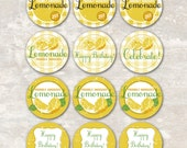 PRINT & SHIP Lemonade Stand Birthday Party Cupcake Toppers (set of 12) >> personalized and shipped to you <<