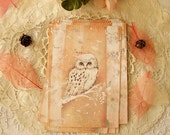 "Postcard - Greeting card - owl - ""Snow owl"""