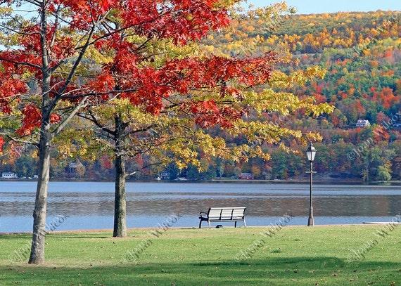 Scenic Autumn Fall Foliage & Lakeside Park Bench Fine Art Photography Photo Print