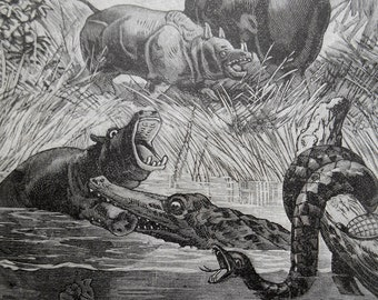Animals of the Tropics, 1887 antique engraving, Elephant, Hippo, Snake vintage natural history wall art