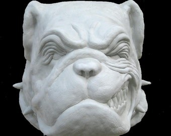 Meat Head the Bulldog Part Two