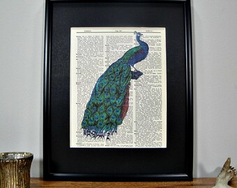 FRAMED 11x14 - Vintage Book Page Dictionary Print - Brilliant Peacock