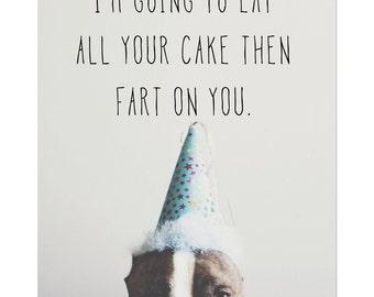 Birthday Farter funny pitbull birthday card