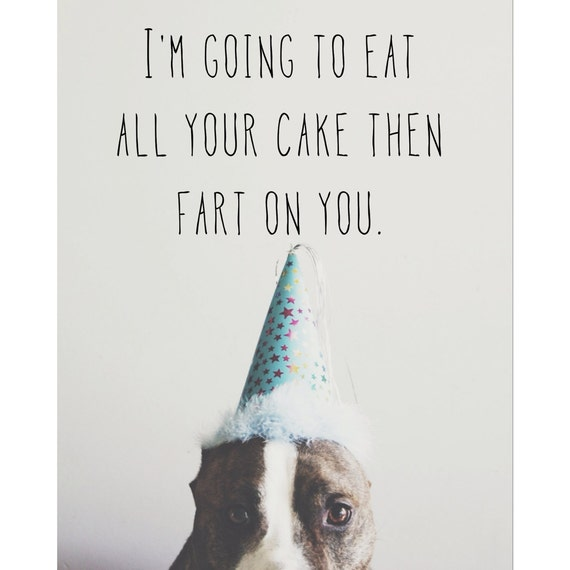 Birthday Farter Funny Pitbull Card