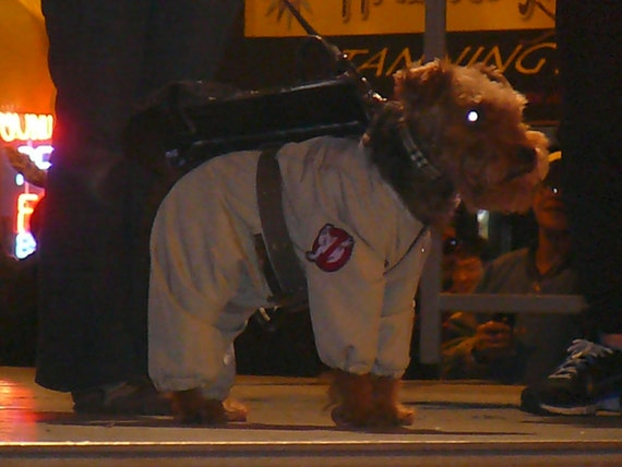 to Ghostbusters Jump suit for dogs xxxs to medium price on Etsy