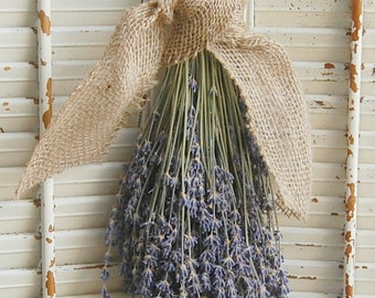 TWO- Dried Lavender Bouquets  /  French Lavender Bunches / Rustic Wedding Decor