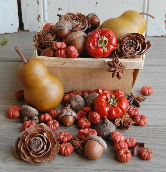 Fall Dried Botanical Vase Filler Rustic Autumn Decor
