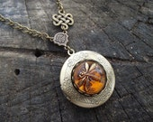 Dragonfly in Amber - Czech Glass Dragonfly Button, Celtic Knot Accent and Antiqued Brass Locket Necklace