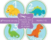 baby month milestone stickers (No.41) dinosaur boy digital download print DIY printable monthly stickers baby age stickers