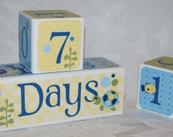 Age Cubes . Photo Blocks . Personalized Blocks . Turtle Reef