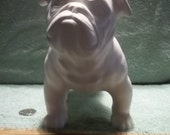 English Bulldog  in Ceramic Bisque - Ready to Paint Bull Dog Bulldogs