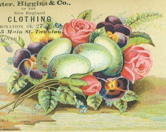 Antique Trade Card Ad Flower Bouquet Egg Nest Pansy Rose Foster Higgings New England Clothing Co Color Advertisement