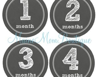 FREE GIFT, Baby Month Stickers, Monthly Boy  or Girl Stickers,  Baby Shower Gift, Bodysuit Stickers,  Milestone Sticker Photo Prop