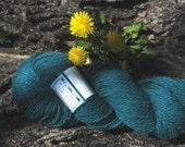 Teal wool yarn worsted -  weight wool knitting yarn - Peace Fleece - Soyuz-Apollo Teal - yarn shop - knitting supplies - teal knitting yarn