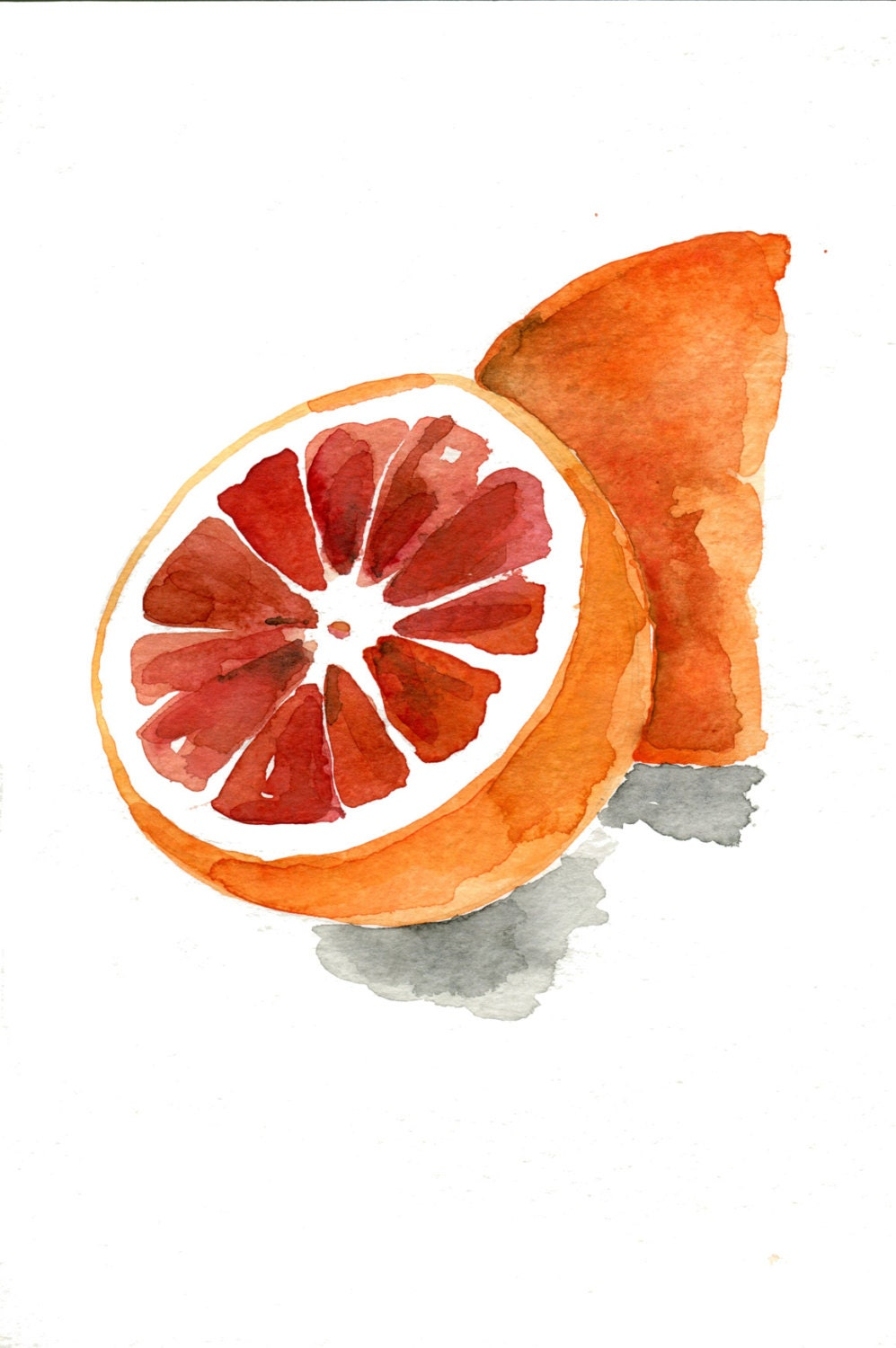 Blood Orange No 2 Art Print Watercolor Painting By