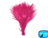 Wholesale Peacock, 100 Pieces - HOT PINK Bleached and Dyed Tails Peacock Feathers (bulk) : 1301