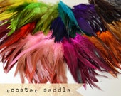 50 pcs+ - Rooster Saddle feathers - 2 inch strip - two-tone, pointy tip, shiny feathers, exotic feathers