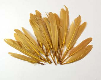 24pcs Small Duck Quills, Stiff loose feathers-Brown
