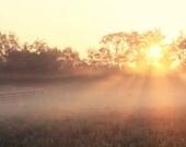 Sunrise Photograph morning mist golden russet rustic country landscape fog sun yellow orange summer morning cinnamon glorious field 8x12
