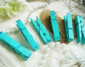 Mint & Blueberry (Green/Navy) Distressed Mini 2 Inch Clothespins Set of 6 - Shabby Chic Home Decor. Wedding Banner. Baby Shower Favors.