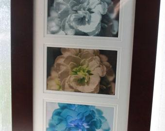 One Flower Three Views