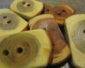 8 Yew And Sassafras Wood Tree Branch Toggle Buttons. 1.50 To 1.75 Inches Wide.