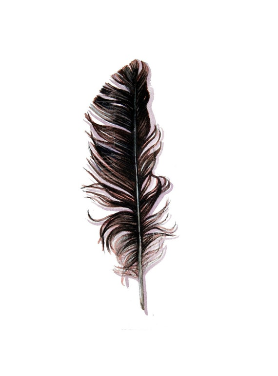 Crow Feather Original Watercolor Feather Study By Jodyvanb