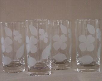 Dogwood Etched Glass Tumblers Set of 4