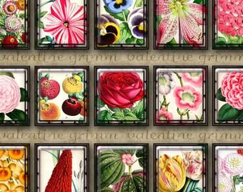Scrabble Size Digital Printable FRAMED FLOWERS collage sheet for Jewelry Pendants Crafts...Vintage Botanical Art