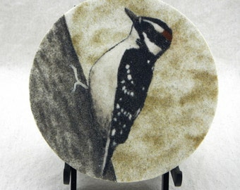 "Downy woodpecker 7"" circle sand painting original North American bird painting bird birdfeeder birds art work"