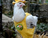 Charity knitting pattern Chicken Coat