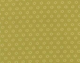 Honeysweet - Amber Drops in Pear by Fig Tree & Co for Moda Fabrics
