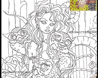 Owl Coloring Page - Owl Digi - The Owl Keeper - Owl Art- Digi / Printable Download PDF Coloring Page - Concetta Kilmer
