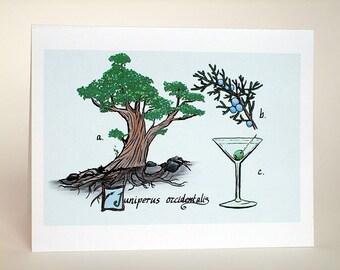 Juniper and gin card