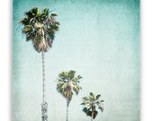 "California Photos, aqua decor, palm tree, mint home decor, LA style decor - ""Letters From Those Sunny Days"" - Fine Art Photograph"
