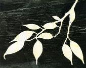 detail, Giclee print, botanical study, archival reproduction of original monoprints