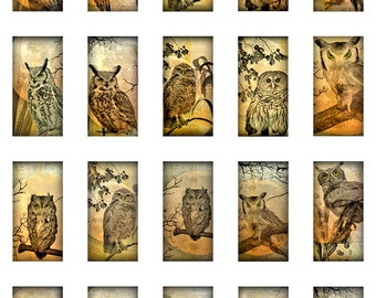 Owl Moon Ephemera 1x2 Inch Domino Size Digital Instant Download JPEG Images (13-30)