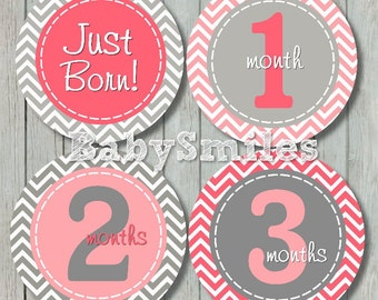 FREE GIFT Monthly Baby Stickers Baby Month Stickers Girl Month Sticker Monthly Bodysuit Sticker Monthly Milestone Sticker Sweet Girl Chevron