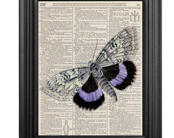 Dictionary Art Print - Butterfly - 8x10