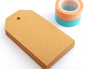 SALE Blank gift tags 100 large basic / brown kraft card gift tags / blank swing tags / kraft swing tags / wedding place cards / large tags