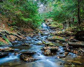 Rustic Woodalnd Creek Photo, Scenic Forest Green Print, 5x7 Print, River rocks, blue water