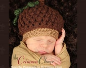 Acorn Cap Hat - Baby Hat Pattern Crochet