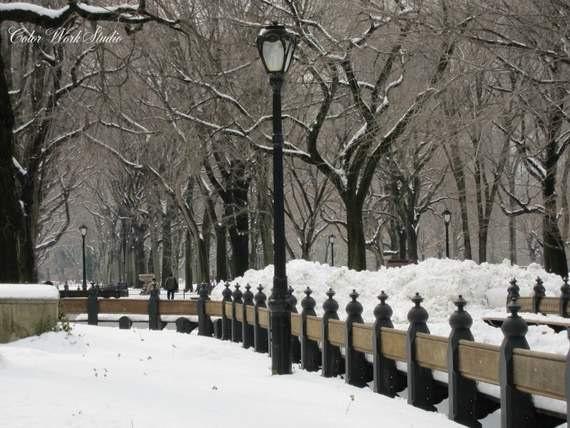 New York Photography, New York Print, Central Park Photo, Winter Print, Snow in Central Park, Nature, Landscape, Manhattan, NY Home Decor
