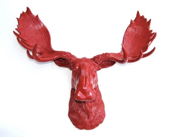 Faux Taxidermy Red Moose Head - Wall Mount - Resin Moose M4848