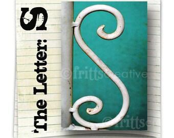 Letter S Alphabet Photography  COLOR 4x6 Photo Letter UNFRAMED